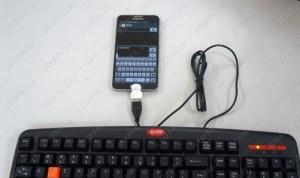 USB переходник для подключения к коммуникатору (смартфону, планшету) внешних устройств OTG Image 2